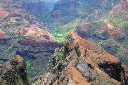waimea-canyon-ridge-662